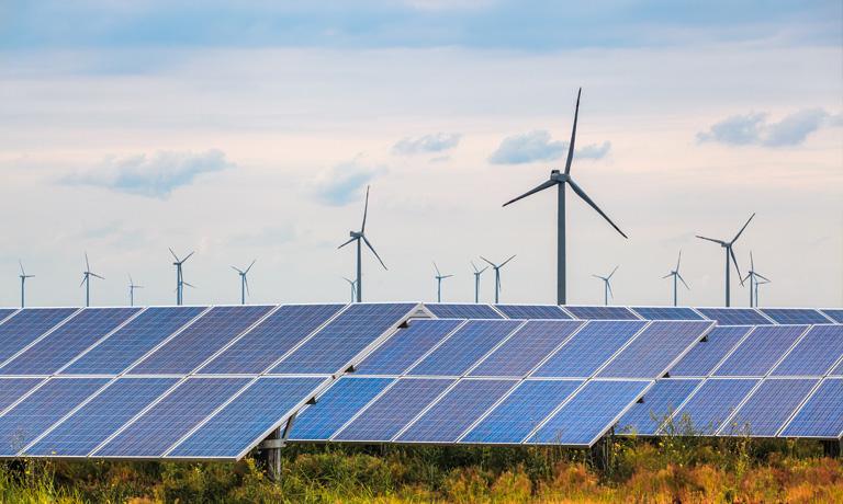 Google renovable